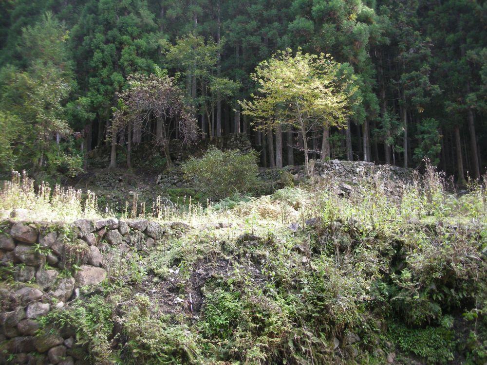 shirakuchisenken